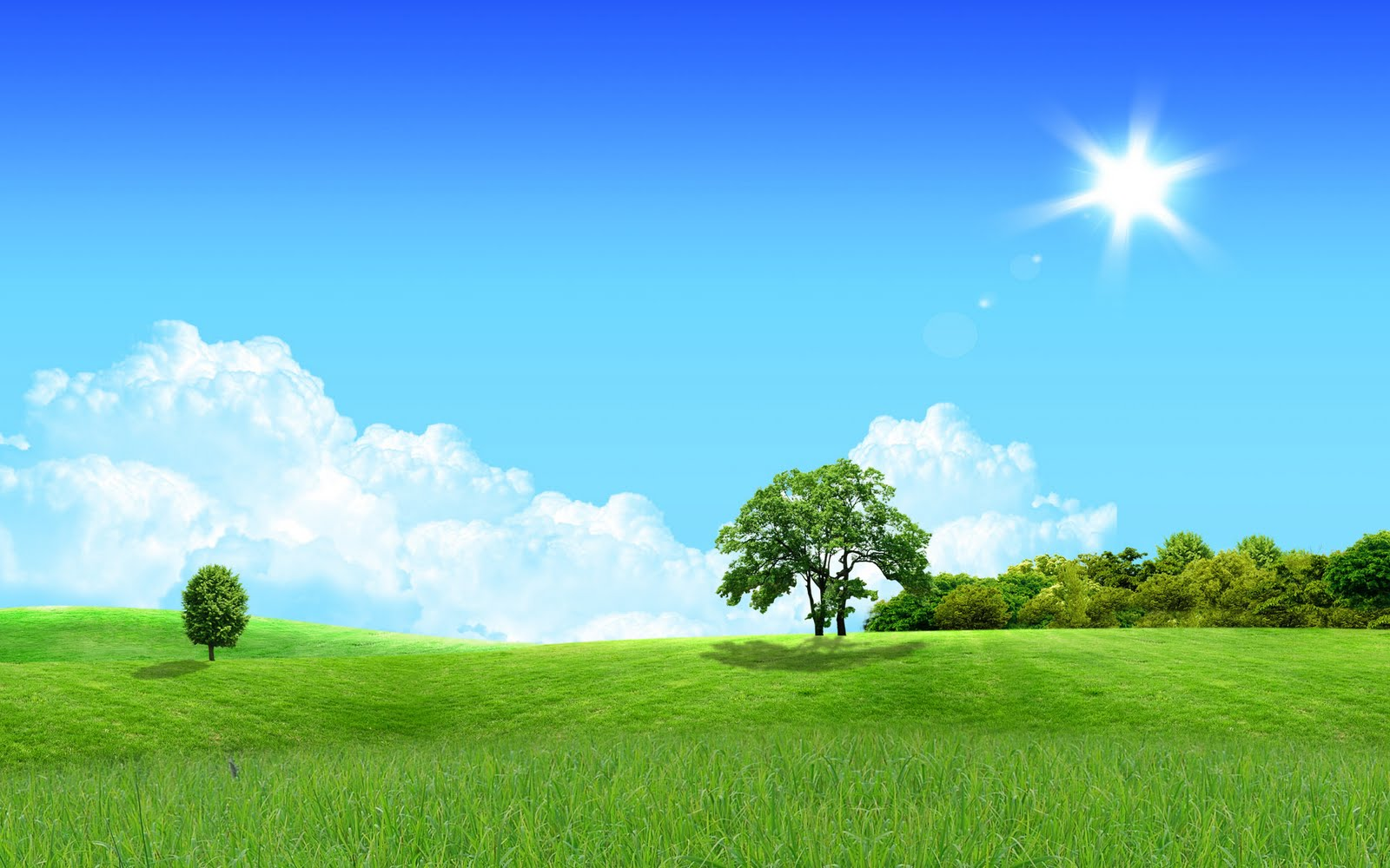 Pleasant green sky background wallpapers for Good home wallpaper