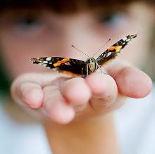 """Kişisel yazılarımla da sizinleyim..............""""Avucumda Bir Kelebek"""""""