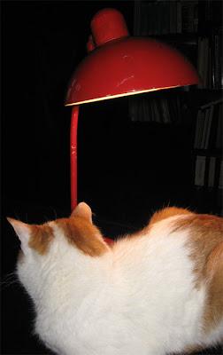 Bauhaus-Lampe
