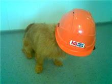 Sikkerhetsutstyr er viktig når man er med på jobb;)