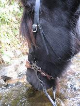En slurk vann er godt på tur:)