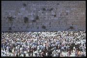 Em breve estaremos com a grande multidão de branco..Kavod!