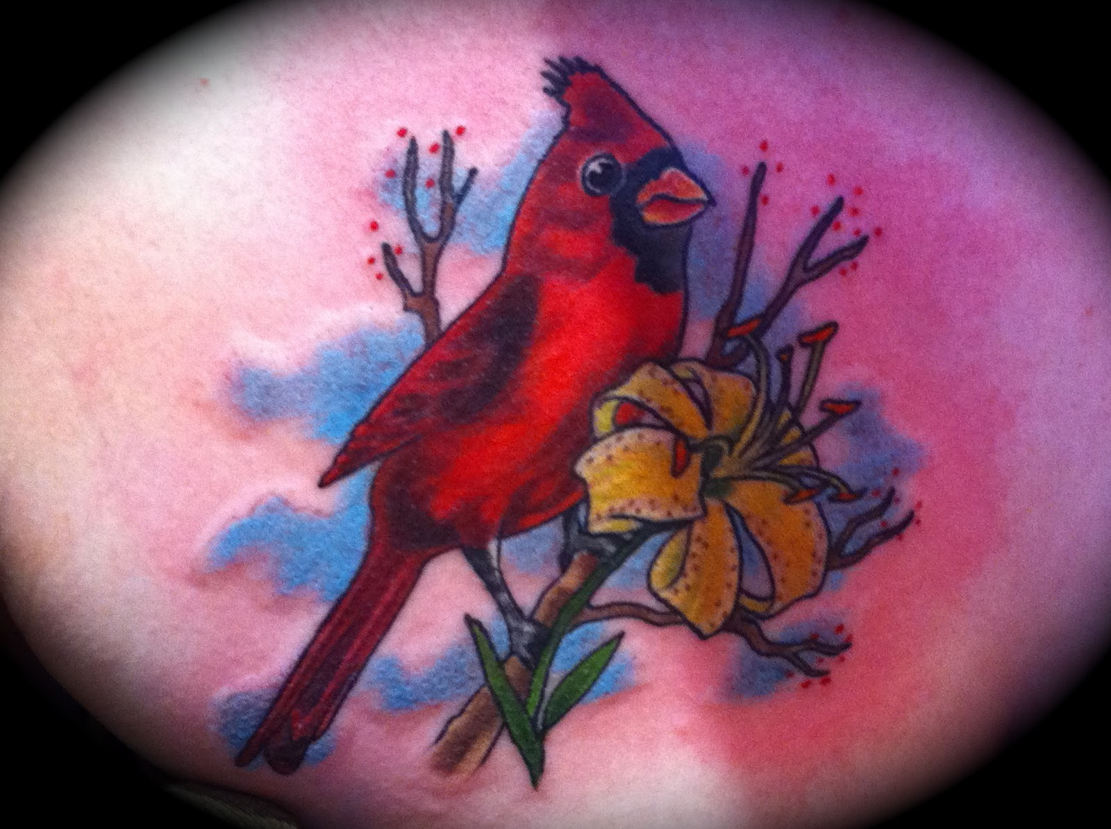 did this cardinal tattoo on heather today i was more than happy to