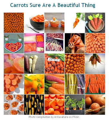 Baby Carrots work of art by M Kasahara Flickr photos