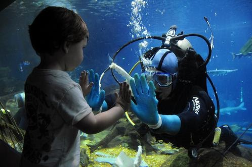 Scuba Diving Blog by Neutral Dive Gear: 84-Year-Old ...