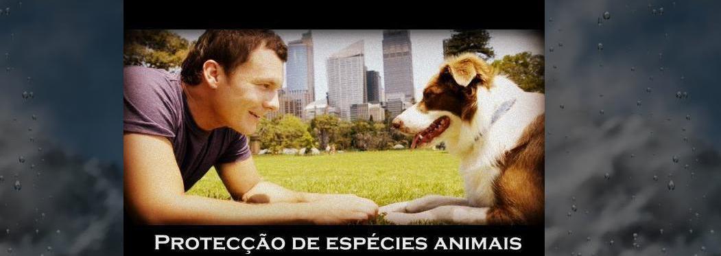 Protecção de espécies animais