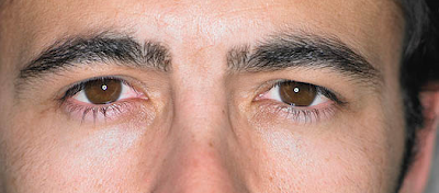 brows3 How to groom your own eyebrows   a guide for men.