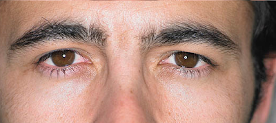 brows How to groom your own eyebrows   a guide for men.