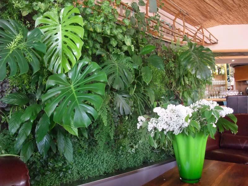 Wall art urbanflore les murs v g taux ram nent la for Mur vegetal exterieur quelles plantes