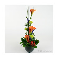 Gör någon glad....skicka blommor