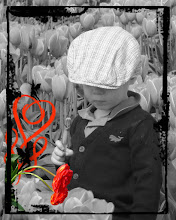 Free Digital Spring Photo Borders