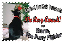 From Kate & Da Katz