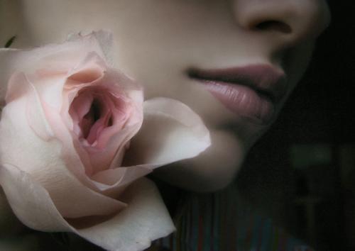 Un taller literario es como un capullo, nunca se sabe qué bella flor puede nacer de él...