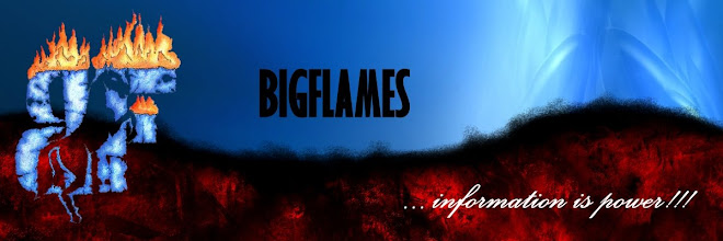 Welcome to BigFlames