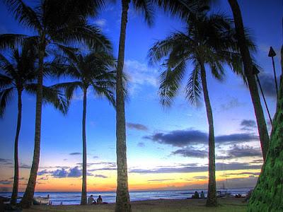 Delights of Waikiki Beach