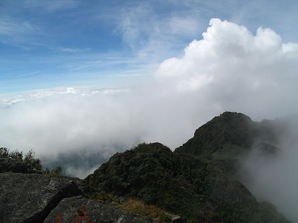 Looking down from Fansipan Peak