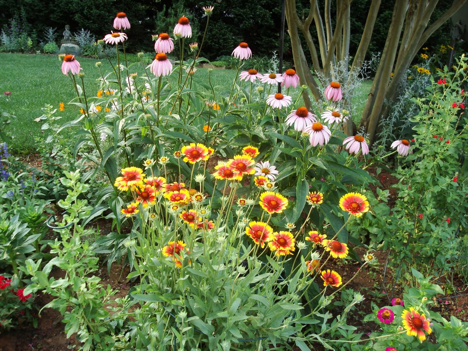 Garden flower bed crowdbuild for for Flowers for flower beds