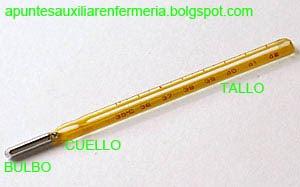 Cuales son las partes del bahomanometro estetoscopio y termómetro ...