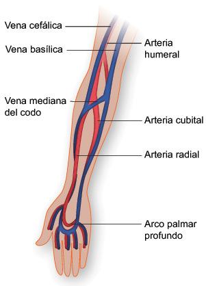 muestras de sangre arterial: