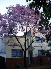 Escuela nº 464
