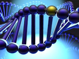 gene clipart