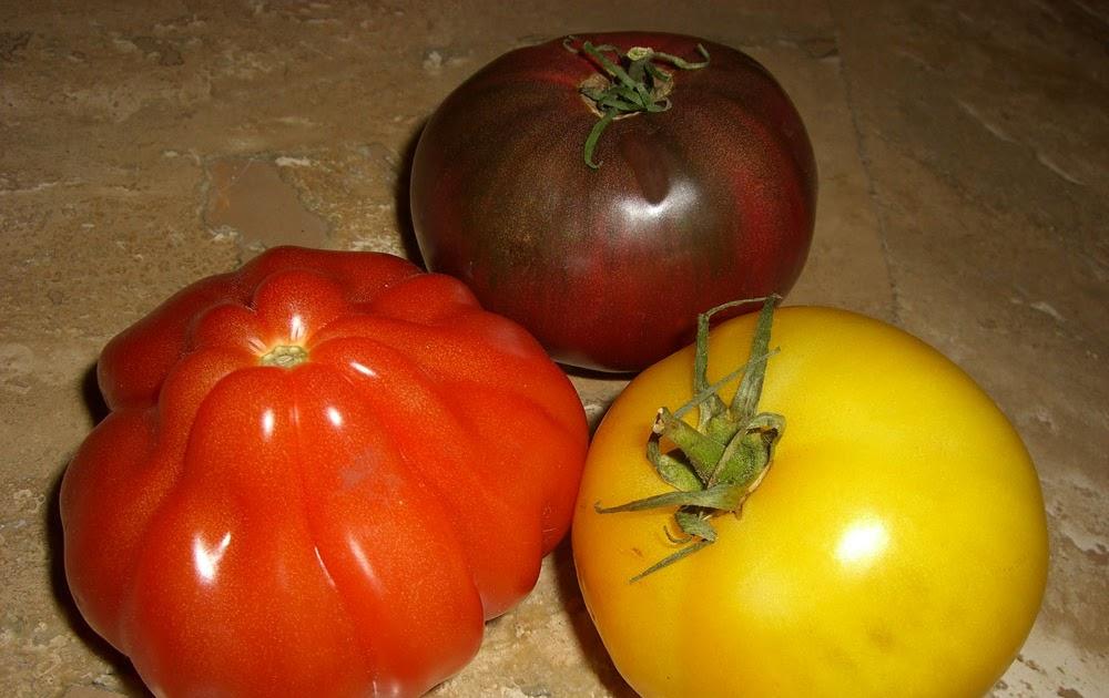 Maple Macaroni: Recipe: Heirloom Tomato Caprese Salad