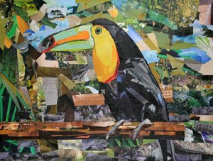 Toucan Samantha by collage artist Megan Coyle