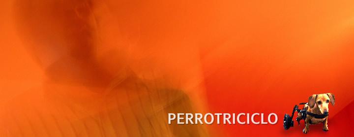 perrotriciclo