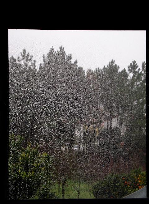 the  ryuichi sakamoto rain