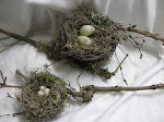 Bird Nest Tutorial