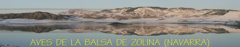 Aves de la balsa Zolina (Navarra)