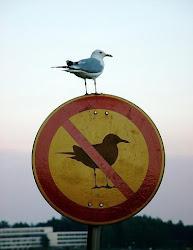 ممنوع