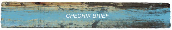 The Chechik Brief