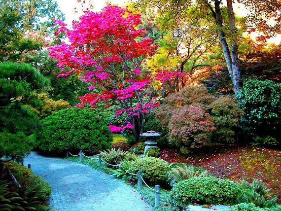 jardin comunal nº  231