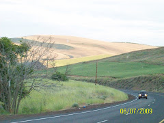 High Plains near The Dalles