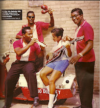 The Bo Diddley Orchestra