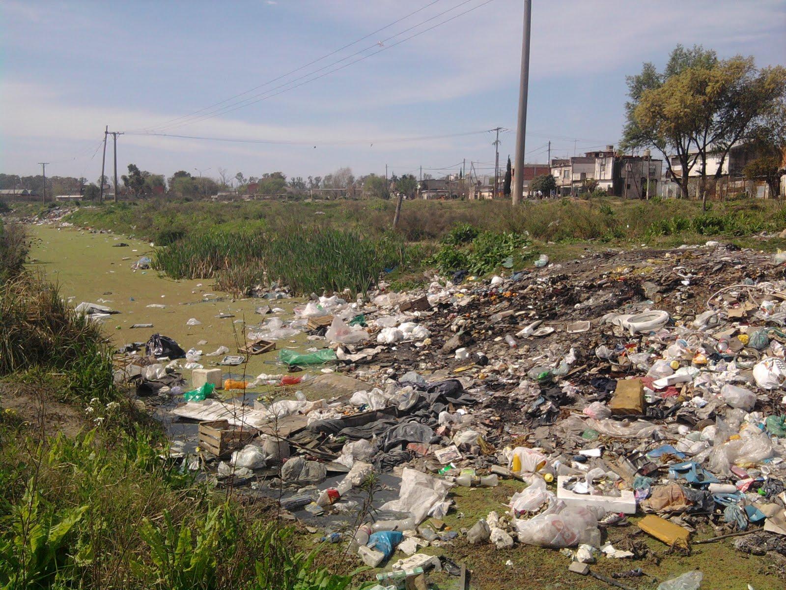 Land Pollution Essay