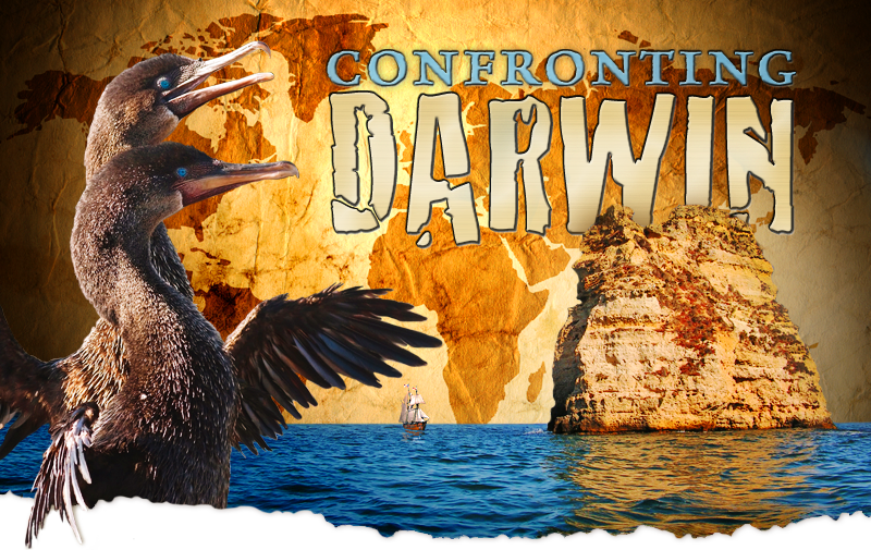 Confronting Darwin