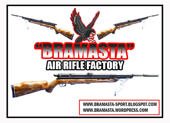BRAMASTA AIR RIFLE