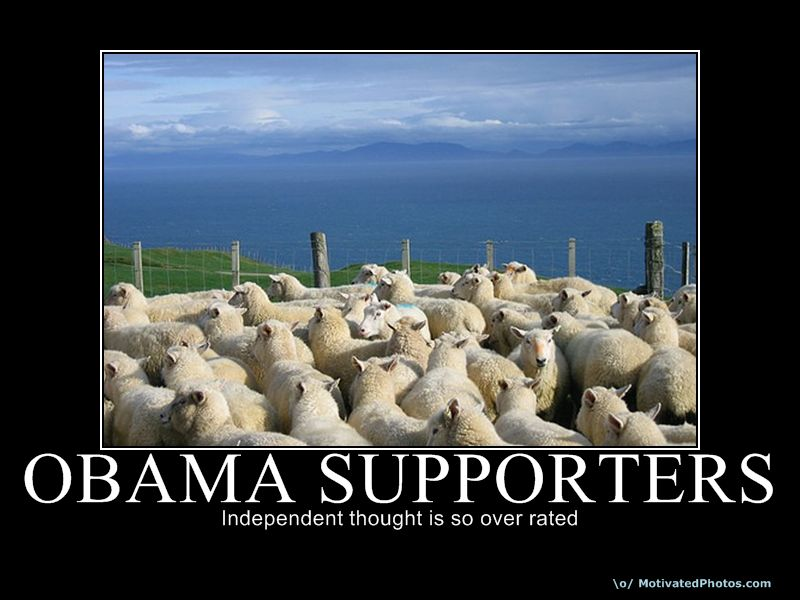 Obama s sheep
