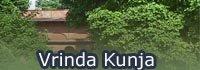 Vrinda Kunja. Vrindavan, India