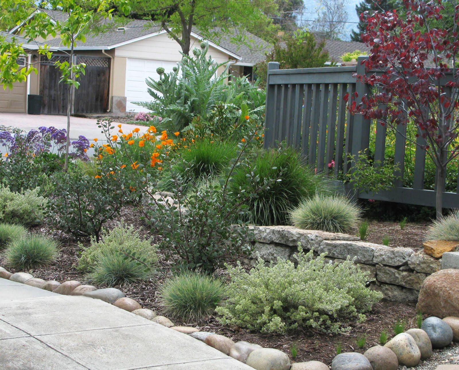 InterLeafings A Bigger View Of A Smaller Garden Part 2