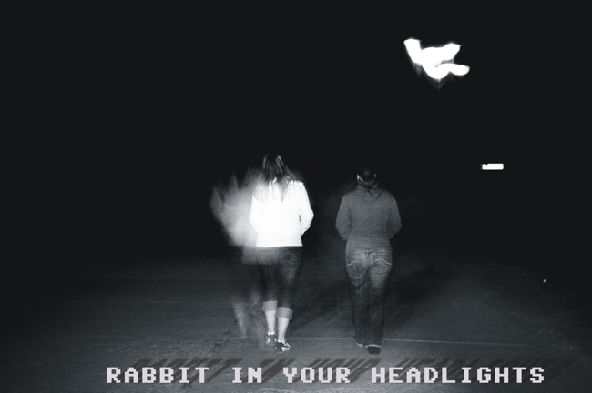 :: rabbit in your headlights :::