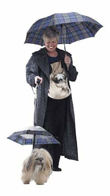 Guarda-Chuva para Cachorros
