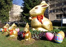 Monumental Lindt Gold Bunny
