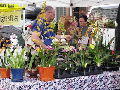Penn Quarter farmer's market, orchids