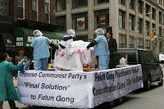 What They do to the Falun Gong
