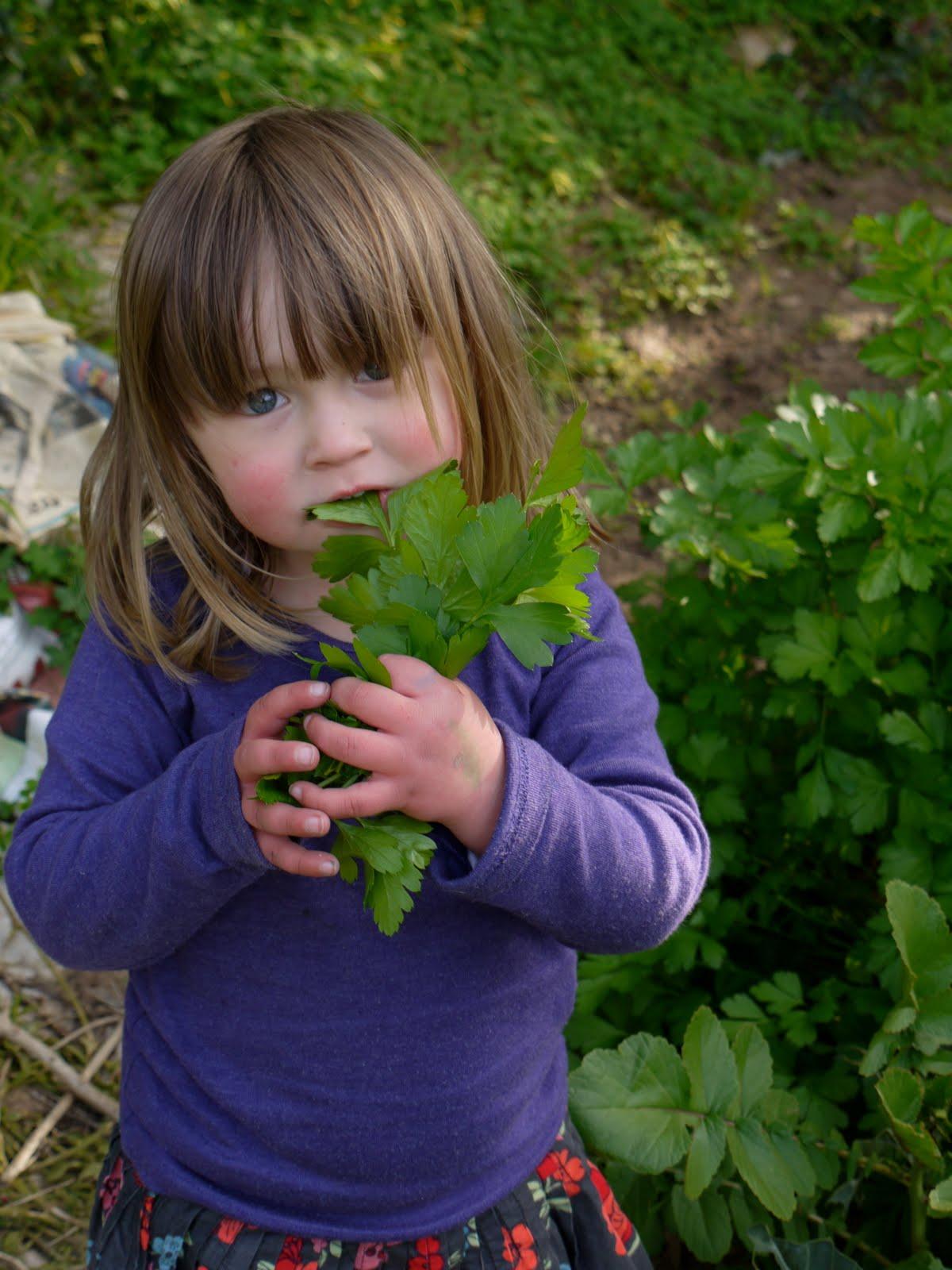 montessori practical life gardening