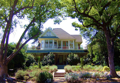 victorian+with+camphor+trees Homespun  photo