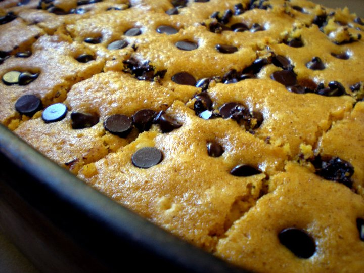 Brown Family: Pumpkin Chocolate Chip Bars